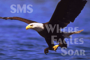 SMS eagle